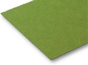 Colorpappe hellgrün