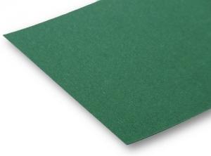 Fotokarton grün