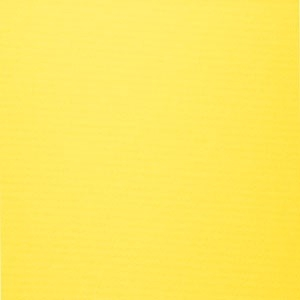 SRM902-Yellow